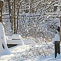 Fresh Snowfall  by Jack Schultz