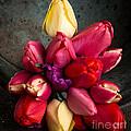 Fresh Spring Tulips Still Life by Edward Fielding