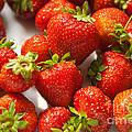 Fresh Strawberry by Boris Suntsov
