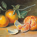 Fresh Tangerine Slices by Theresa Shelton