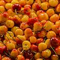 Fresh Yellow Cherries by Scott Campbell