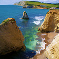 Freshwater Bay by Ron Harpham