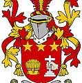Friel Coat Of Arms Irish by Heraldry
