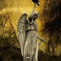 Friend Of An Angel by Gothicrow Images