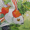 Friendly Fantail Tiny Goldfish Painting by Tracie Thompson
