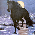 Friesian Horse Blue Moonlight Setting by Sandra Maddox