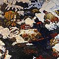 Frigid Flow by Peter Muzyka