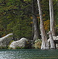 Frio River 2 by Andrew McInnes