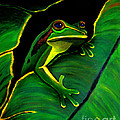 Frog And Leaf by Nick Gustafson