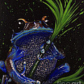 Frog by Elena Spedale
