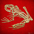 Frog Skeleton In Gold On Red  by Serge Averbukh