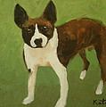 Frog The Dog by Carole Katchen