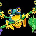 Frogs On Vines by Nick Gustafson