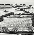 From Raddon Top In The Snow by Pete Hemington