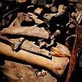 From The Bone Yard 2 by Nadalyn Larsen