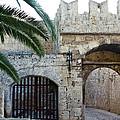 Fronds Over Castle Doorway by Lorraine Devon Wilke