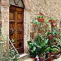 Front Door by Ellen Henneke