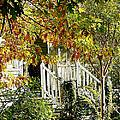 Front Porch Color by Pamela Patch