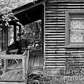 Front Porch by Mel Steinhauer
