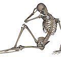 Front View Of A Human Skeleton Posing by Elena Duvernay