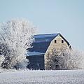Frost Farm by Bonfire Photography