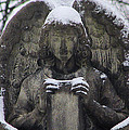 Frosted Stone Angel by Gothicrow Images