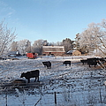 Frosty Barnyard by Bonfire Photography