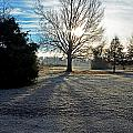 Frosty Morning by Debbie Portwood