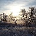 Frosty Rise by Bonfire Photography