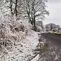 Frosty Road by David Head