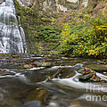 Frotenac Falls And Trumansburg Creek by Colin D Young