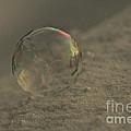 Frozen Air by Susan Herber