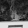 Frozen Bench by Scott Hafer