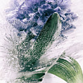 Frozen Blue by Margit Lisa Roeder