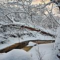 Frozen Creek by Sebastian Musial