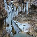 Frozen Eden by Deanna Cagle