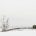 Frozen Farm by Mary Jo Allen