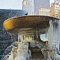 Frozen Fountain by Maritza Melendez