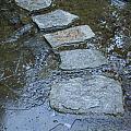 Slippery Stone Path by Roxy Hurtubise