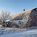 Frozen In Time by Bonfire Photography