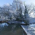 Frozen Iseland by Svetlana Sewell