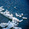 Ice Chips Frozen Ocean  by Roxy Hurtubise
