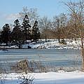 Frozen Pond by Carolyn Stagger Cokley