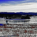 Frozen Pond Digital Painting by Barbara Griffin