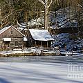Frozen Pond  by Paul Ward