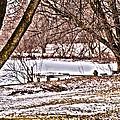 Frozen Pond by William Norton