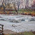 Frozen Pond by Ylli Haruni