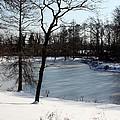 Frozen Pond2 by Carolyn Stagger Cokley