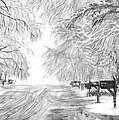 Frozen Rain  by Carol Wisniewski