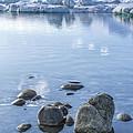 Frozen Serenity by Evelina Kremsdorf